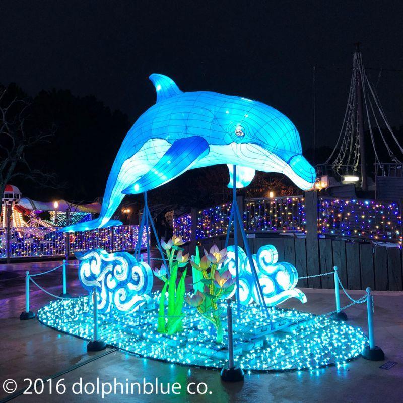 イルカのイルミネーション