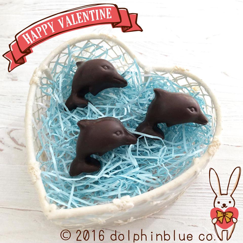 イルカのバレンタイン
