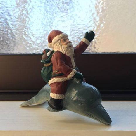 イルカのクリスマス